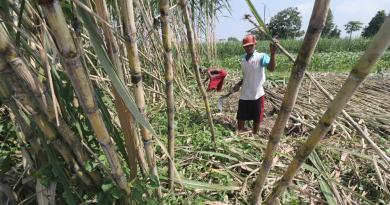 Petani dan Produsen UKM Mamin Jatim Adakan Istighotsah Untuk Perbaikan Permenperin 03/2021